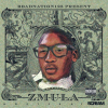 "New Mixtape: Zouhloo125 & BBgEmula – ""ZMULA"" | @Zouhloo125 @BbgEmula @DJScream"