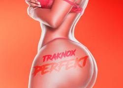 Traknox – Perfekt (Video) | @TraknoxMDB