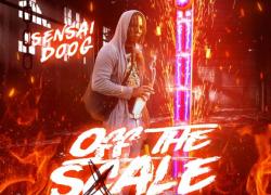 "New Mixtape: Sensai Doog – ""Off The Scale"" | @MisterZone4"