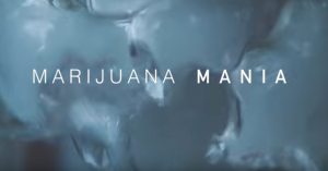 Marijuana Mania Episode 2